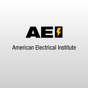 Electrical Archives - Page 2 of 5 - American Electrical Institute